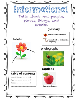Informational Anchor Chart