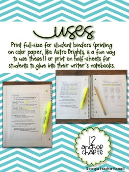 Informational Anchor Charts for Third Grade Writing