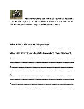 Informational Bear Unit