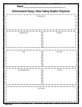 Informational Essay Graphic Organizer - Essay