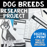 Animal Research Project | Animal Research Report Template