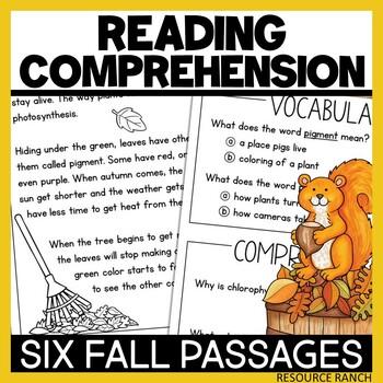 Fall Reading: Bats, Spiders, and Pumpkins
