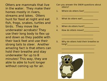Informational Text 5w's