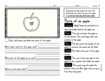 Informational Text: Apples | Reading Comprehension Passages and Questions