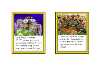 Informational Text - Animals! Animals! Animals!
