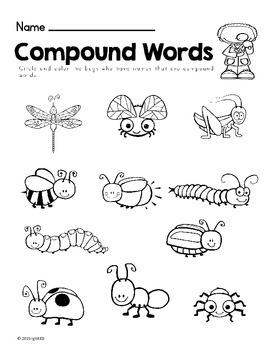 Informational Text- Bugs