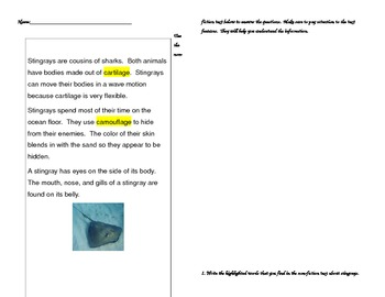 Informational Text Features Activity/Assessment ~ Stingrays