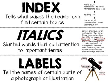 Informational Text Features Word Wall - Freebie Sample