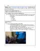 Informational Text - International Organization lesson