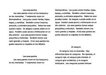 Informational Text (Kangaroo& Grizzly Bears)- Spanish