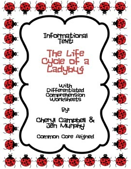 Informational Text: Ladybug Life Cycle {Common Core Aligned}