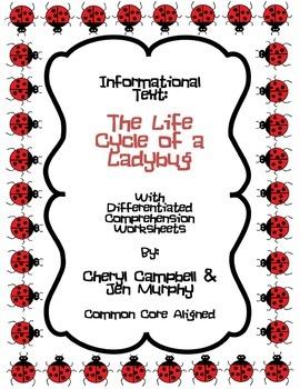 Informational Text: Ladybug Life Cycle {Common Core Aligned}