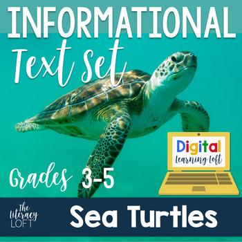 Informational Text Set {Sea Turtles}