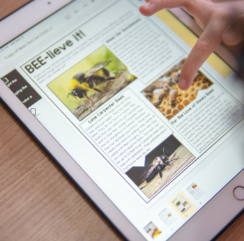 Informational Text Set {The Benefits of Bees}