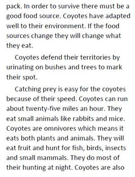 Informational Text and Comprehension Questions for Coyotes