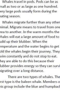 Informational Text and Questions About Whales