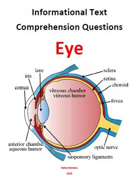 Informational Text and Questions for the Eyes