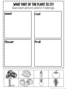 Informational Texts- Guided Reading Texts and Activities for Kinders (April)