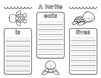 Informational Turtle Research Activities