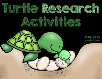 Informational Turtle Research Activities
