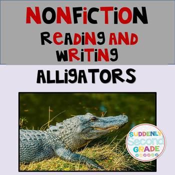 Informational Writing: Alligators!