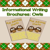 Informational Writing Brochures: Owls
