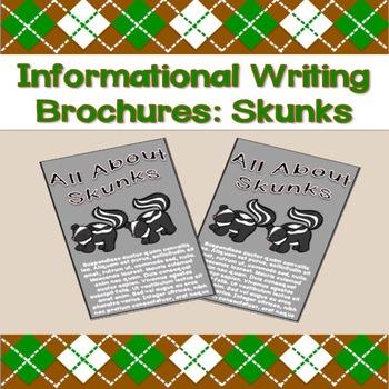 Informational Writing Brochures: Skunks