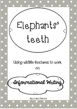 Informational Writing: Elephants' Teeth