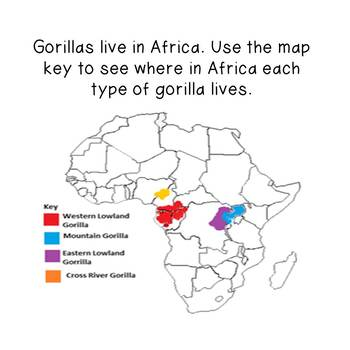 Nonfiction Reading and Writing- Gorillas