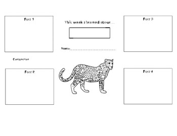 Informational Writing Graphic Organizers