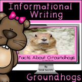Informational Writing Groundhogs for Use with Google Slide