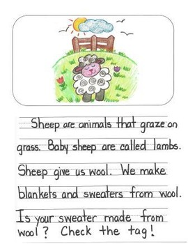 Informational Writing Mentor Texts in First Grade: Koalas, Sheep and Lions