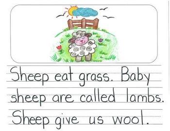 Informational Writing Mentor Texts in Kindergarten: Koalas, Sheep and Lions