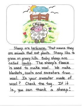 Informational Writing Mentor Texts in Second Grade: Koalas, Sheep and Lions