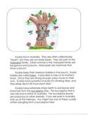 Informational Writing Mentor Texts in Third Grade: Koalas, Sheep and Lions