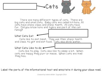 Informational Writing Mini Unit:  Cats