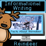 Informational Writing Reindeer for Use with Google Slides™
