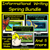 Informational Writing Spring Bundle for Use with Google Sl
