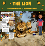 Informational Writing - The Lion  (Non-Chronological Report Writing)