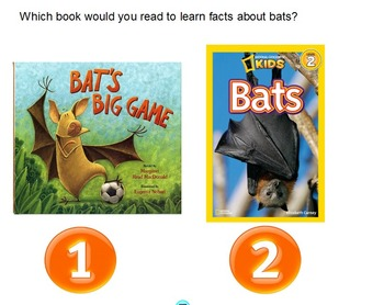 Informational Writing Unit on Bats