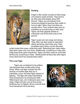 Informational Text - Tigers