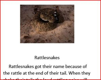 Informational text on rattlesnakes and beavers