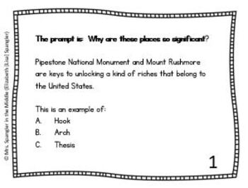 Informative Essay Task Cards - Text-Based!