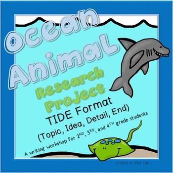 Ocean Animal Reports