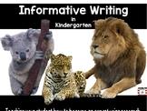 Informative Writing Animal Reports