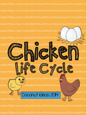 Informative Writing: Life cycle of a chicken