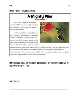 Informative Writing Prompt - Hummingbirds
