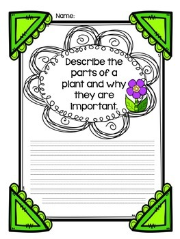 Informative Writing Prompt--Plants