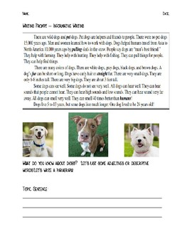 Informative Writing Prompt Worksheet - Dogs