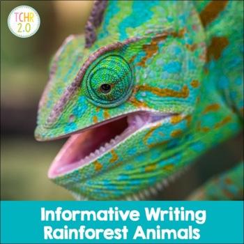 Rainforest Research